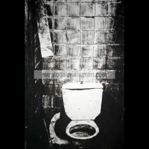 8. TAZA WC II DE LEJOS